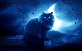 File:Nightclanpic.jpg