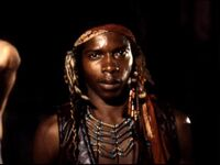 Cochise12