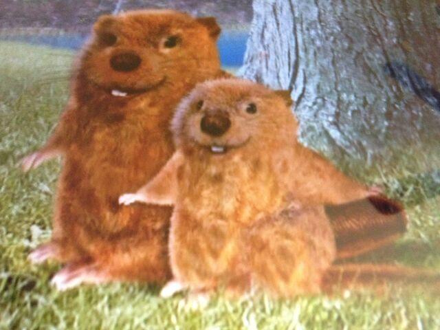 File:Beaverwonderpets.jpg