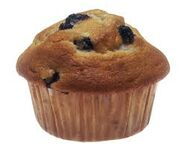 Blue Berry Muffin