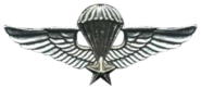 Parachutist Badge (Vietnam)