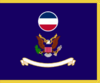 US Army Forces Command Flag