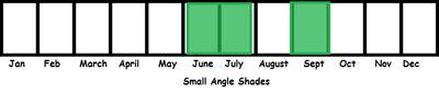 Small Angle Shades TL