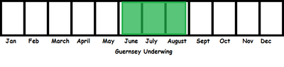Guernsey Underwing TL