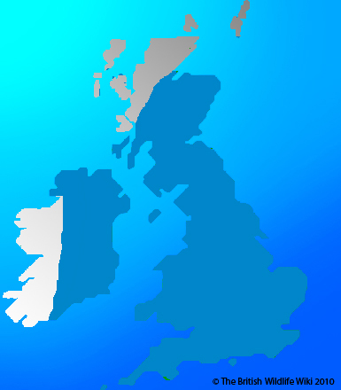 File:Brambing Map.jpg