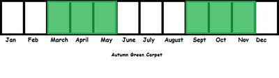 Autumn Green Carpet TL