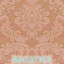 DromEd Texture fam VicM04 WALL07