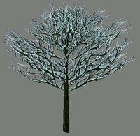 DromEd Object Model treesno2