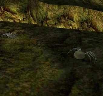 Plik:Sewer Spider.jpg