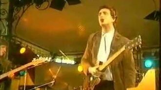 The Icicle Works - Sefton Park Liverpool