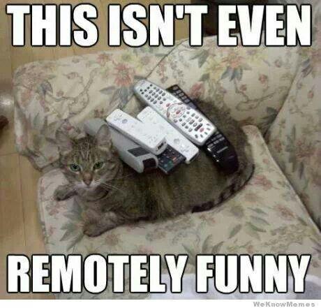 File:Remote.jpg