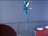 46 ladder
