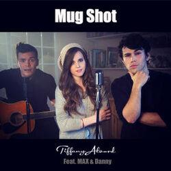 Mug shot cover