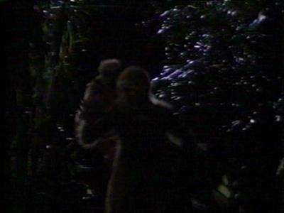File:Morlocks forest wishbone.jpg