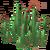 Debris-cactuspatch