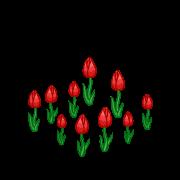 Decoration springtulips red thumbnail@2x