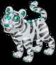 Radiant tiger single