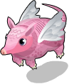 Pink fairy armadillo static