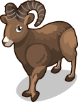 Big Horn Sheep single