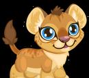 Cubby Lion