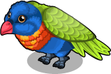 Lorikeet single