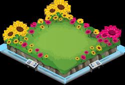 Flowery meadowA