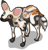African wild dog static