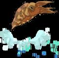 Cuttlefish an