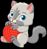Kitty single