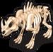 Rhino skeleton single