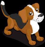 Beagle single