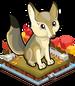 Autumn kit fox single