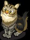 Farmhouse Cat single