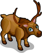 Elk single
