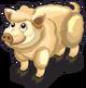 Woolly Pig single