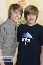 Dylan & Cole (4)