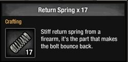Return Spring