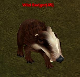 File:Wild Badger.png