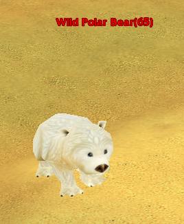 File:Wild Polar Bear.png
