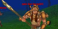 Splint Mail Warrior