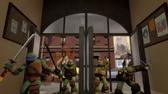 Turtles school entrance