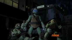 Raph, Leo, Mikey