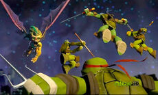 Turtles vs wingnut