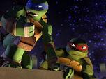 Raphael-image4