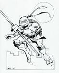 2521008-turtle1327