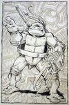 2521021-turtle1585