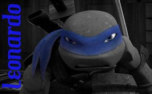 File:Tmnt leo blue mask .jpg