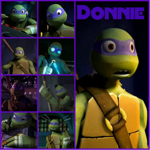File:Tmnt donnie collage 2 by culinary alchemist-d62mqfj.jpg