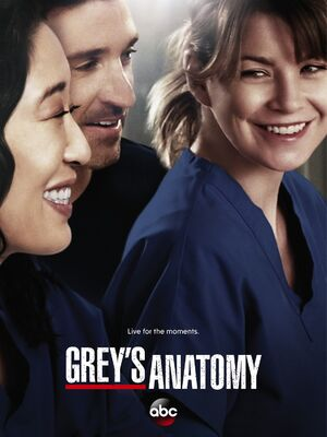 Grey'sAnatomy1Cover