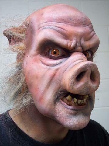 File:Pig 00.jpg
